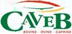 Caveb